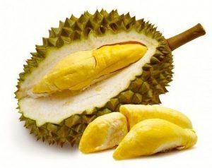 fruta tropical durian
